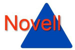 Novell Migration: Kritische Legacy-Applikationen mit OpenLDAP-Proxy umstellen