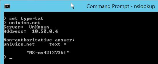 Azure AD User Principal Name nslookup-txt